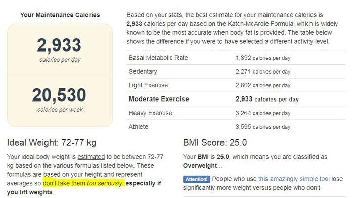 Kalorien BMI Tdee