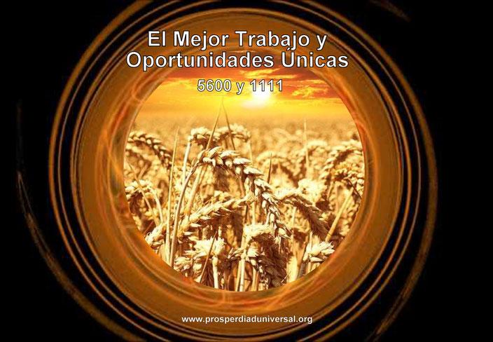 EL MEJOR TRABAJO Y NUEVAS OPORTUNIDADES - ACTIVACIÓN DE LOS  CÓDIGOS SAGRADOS 5600 Y 1111 - Ejercitación Guiada - 45 afirmaciones Poderosas - PROSPERIDAD UNIVERSAL - www.prosperidaduniversal.org
