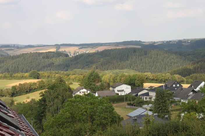 Ausblick von der Dachterasse