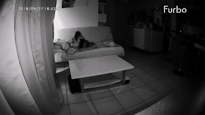Test de la vision nocturne : parfait ! (J'ai un appart pas du tout lumineux.. a 19h avec les rideaux tirés je vous garantis qu'il fait  vraiment nuit..)