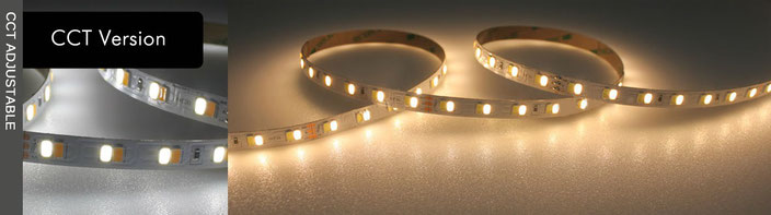 LED Flex Strip CCT Version Nauled
