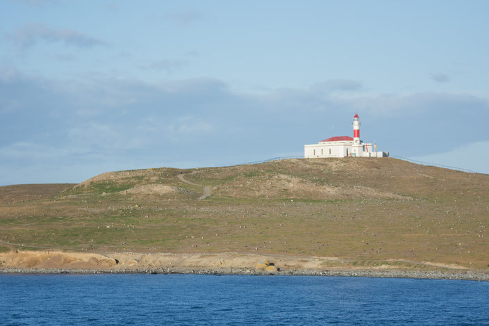 Leuchtturm inkl. Ausstellung zum Thema Pinguine auf Isla Magdalena