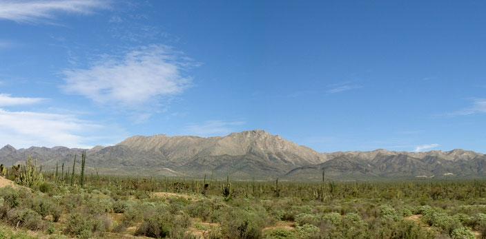 Sierra La Asamblea, en el Valle de los Cirios, Baja California (Foto: J.H. Valdez)