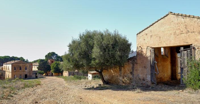 fantasmi_sardegna_villaggio_abbandonato_san_giorgio_villaggio_asproni_fotosodini