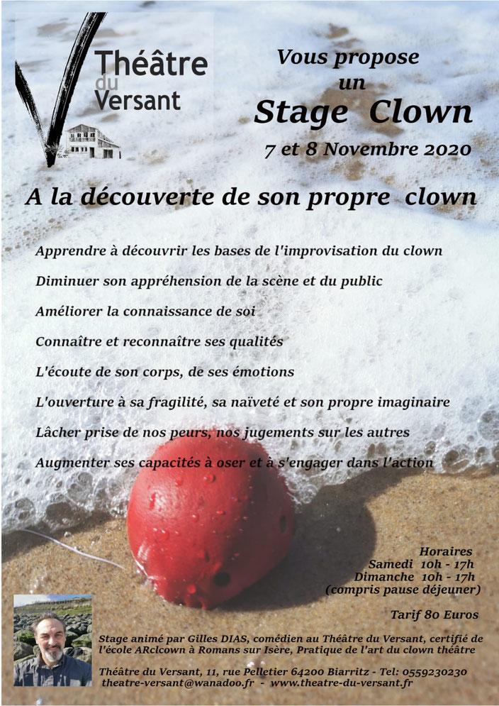 Théâtre - Théâtre du Versant - Biarritz - stage - stage clown - découverte - formation - stage théâtre