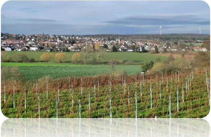 Roßdorf bei Darmstadt vom Roßberg aus gesehen