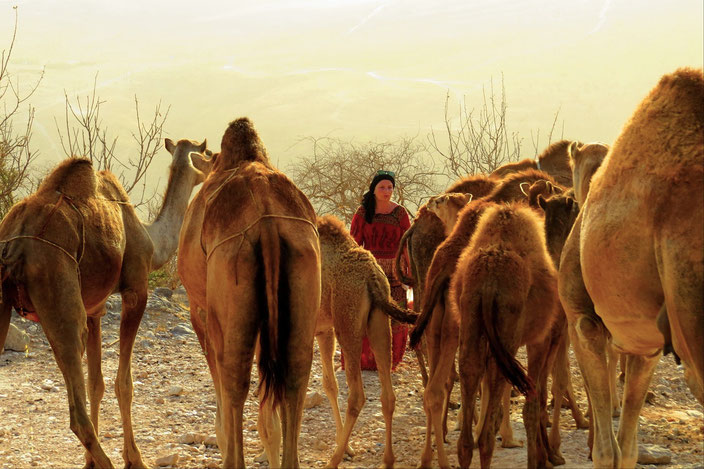 Dhofar Salalah Oman grenzenlosunterwegs