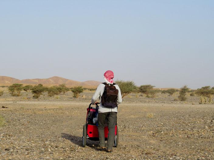 Oman Wüste