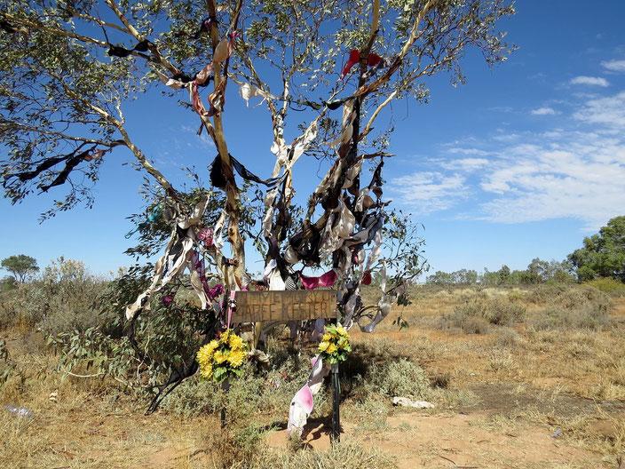grenzenlosunterwegs Australien BH Baum
