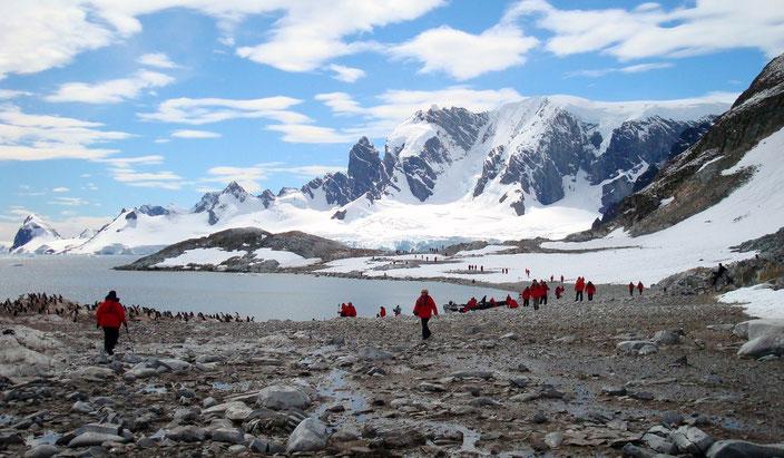 Touristen bringen in ihrer Kleidung und an ihren Schuhen neue Pflanzenarten in die Antarktis.