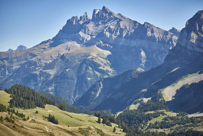 Das Val d'Illiez am Südwestende des Wallis ist eine wichtige Durchgangsroute für Wanderfalter. © René Ruis