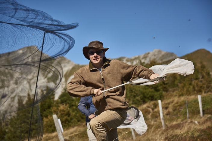 Wissenschaftsjournalist auf Schmetterlingsjagd: Atlant Bieri während seiner Recherche. © René Ruis