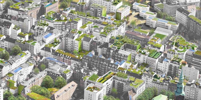 Noch eine Vision in Bremen: Grüne Dächer in der Stadt    (c)Treibhaus Matthias-Friedel