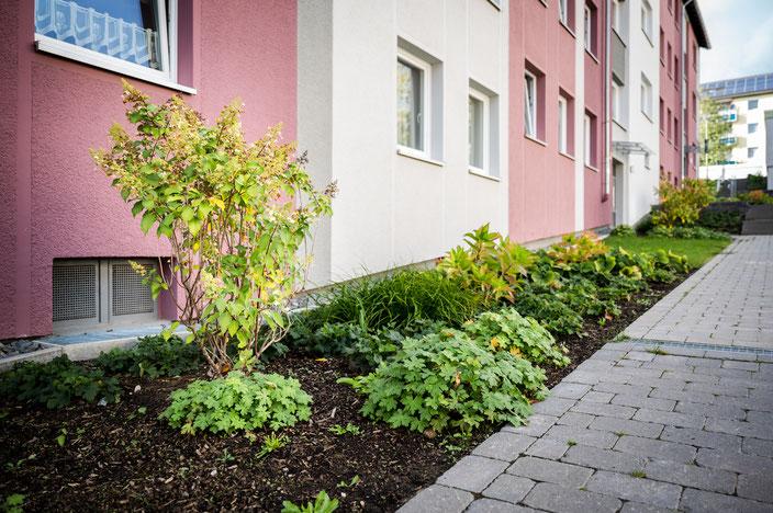Haus mit Gehweg und Pflanzen