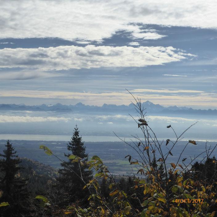 Ein letzter Blick auf den Genfer See und seine Berge im Hintergrund