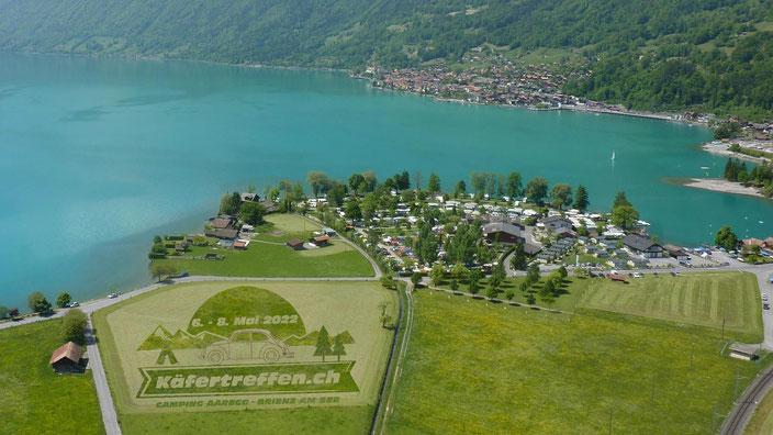 Fotomontage - Kornkris mit Käfertreffen.ch Logo - Flugaufnahme Camping Aaregg - Brienzersee und Brienz
