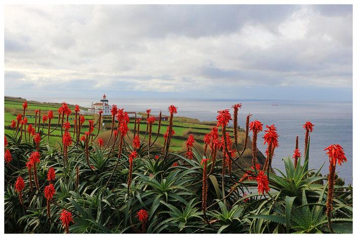 Azoren Aussicht Sightseeing Sao Miguel