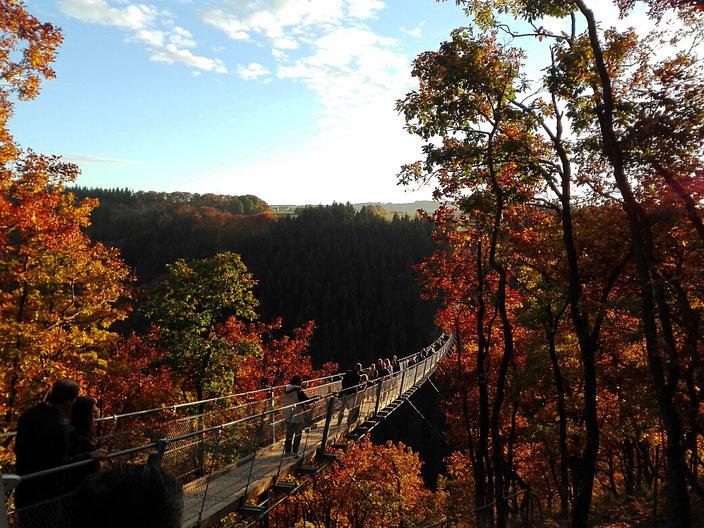 Hängebrücke Geierlay Mörsdorf im Herbst