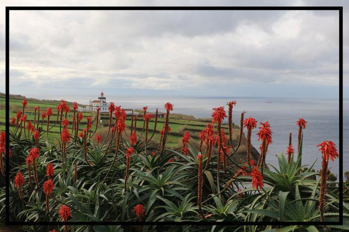 Blick auf den Leuchtturm von Ginetes - Sao Miguel, Azoren