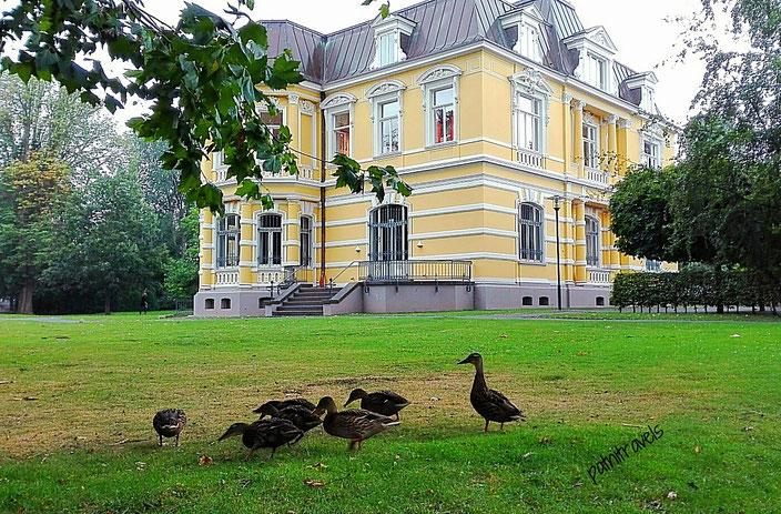 Villa Erckens - mitten im Stadtpark