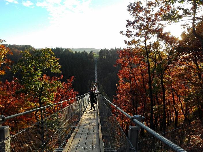 Hängebrücke Geierlay im Herbst