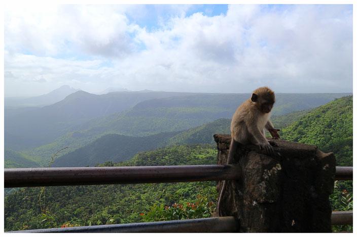Mauritius Süden Sehenswürdigkeiten