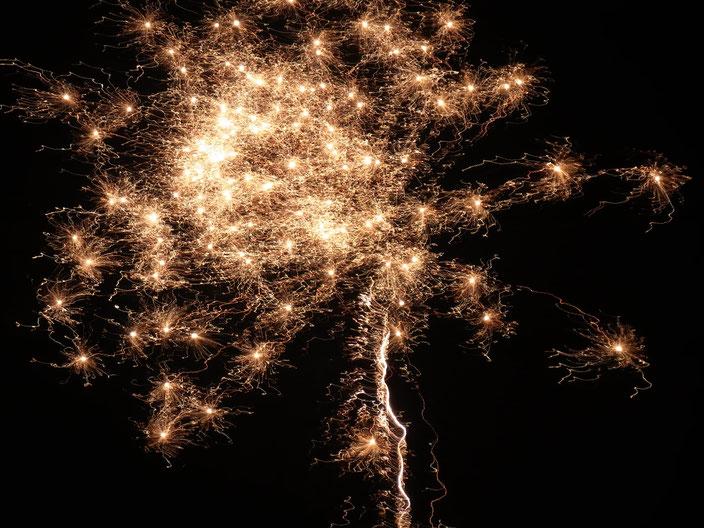 Wir wünschen ein frohes neues Jahr- vor allem Gesundheit.