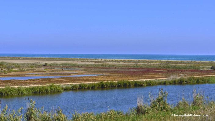 Ausflug in das Ebro-Delta