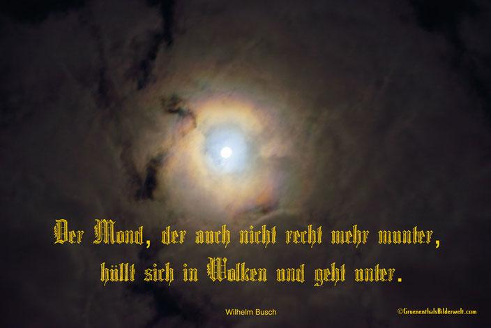 Der Mond, der auch nicht recht mehr munter,  hüllt sich in Wolken und geht unter.  Wilhelm Busch