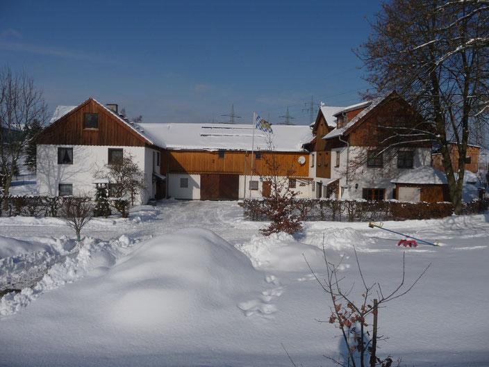 Arzberg|Urlaub auf dem Beyerhof|Wintertraum