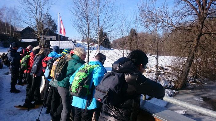 Über 29km ist die Flussmitte der Maltsch die Staatsgrenze zwischen Österreich und Tschechien