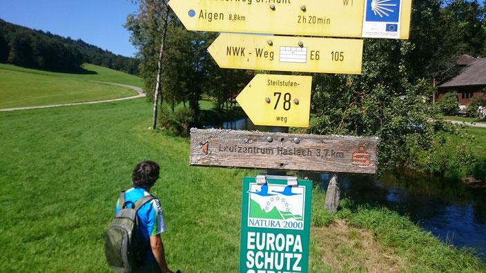 Viele Wege führen nach Schlägl zum Endpunkt unserer Hochsommerwanderung bei fast 30 Grad. Gemächlich rinnt die Große Mühl durch Wälder und Felder. Gute markierte Wege haben uns die Orientierung leicht gemacht.