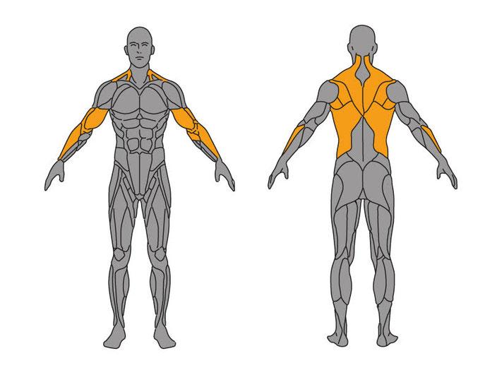 Grafikquelle: http://www.meinefitness.net/