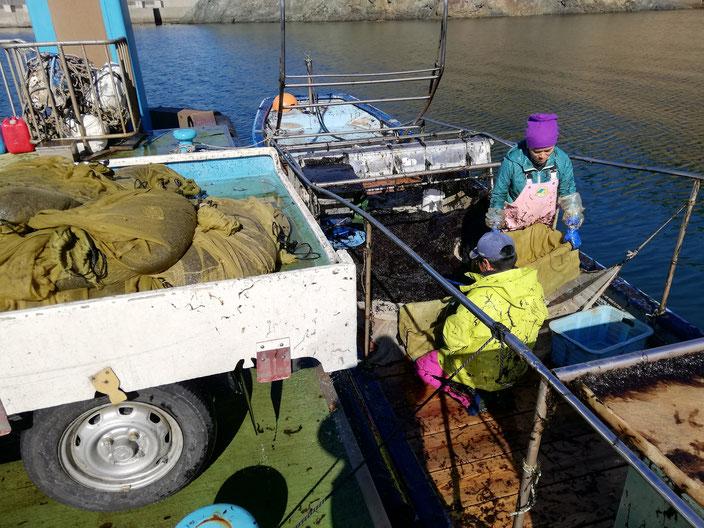 浮桟橋につけた船の上で作業する人たち