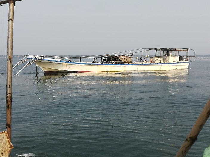 海苔の収穫用の船