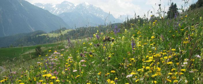 Val Sinestra is onze bestemming voor ons heerlijk yoga wandelweekend