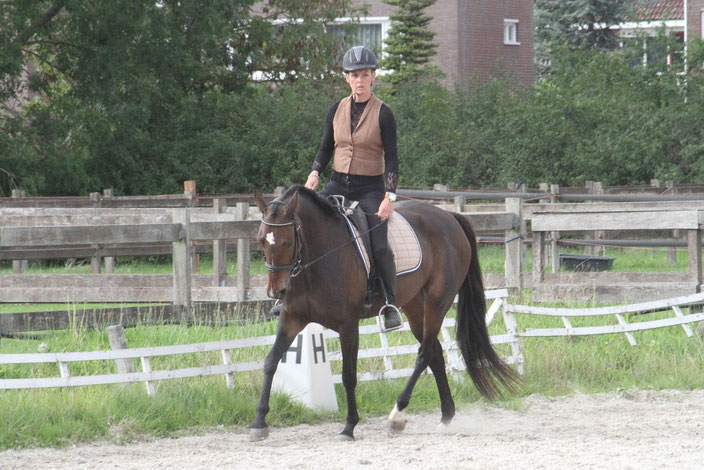 Working Equitation met Draver, Dressuurproef, centered riding