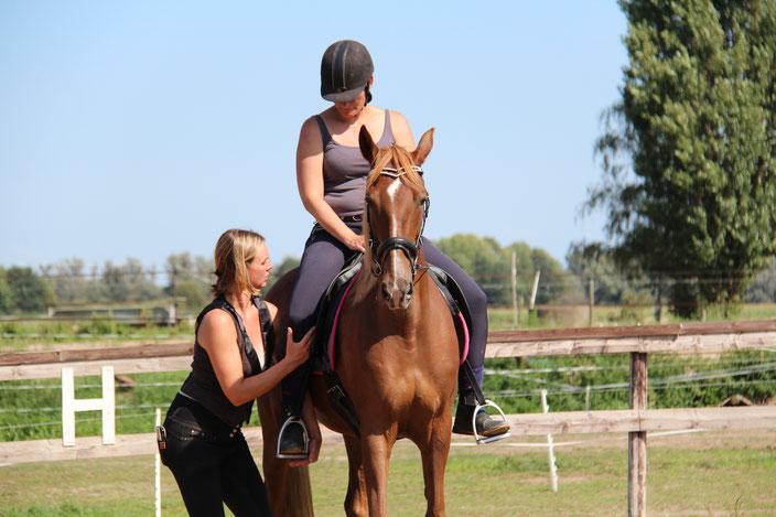 Houding en zit lessen op eigen paard, Houding en zit lessen op privépaard