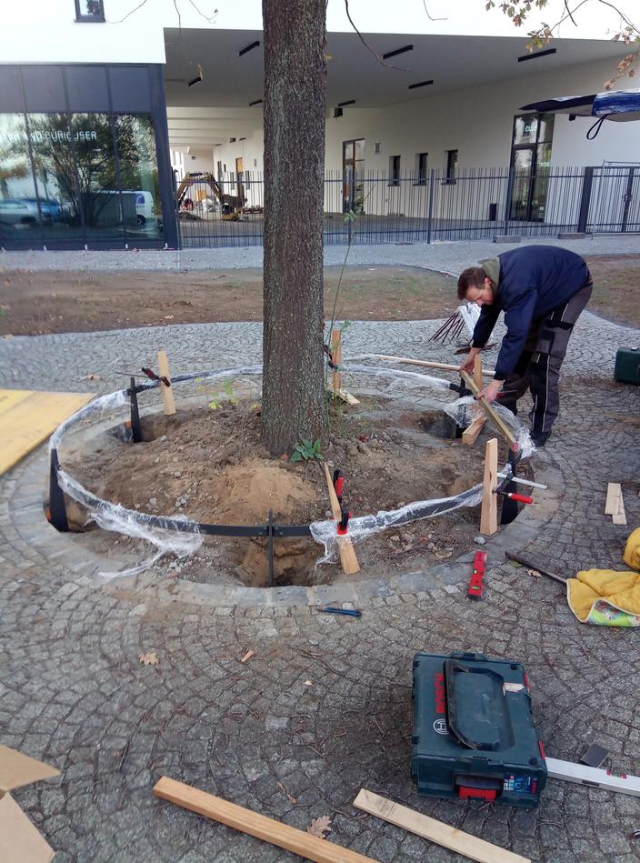 Montage einer Baumscheibeneinfassung in Leipzig