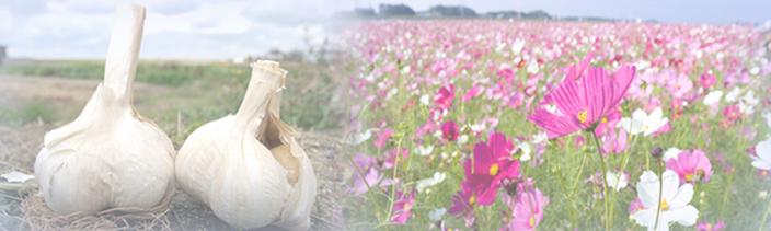 遠賀の自然を活かした事業を応援
