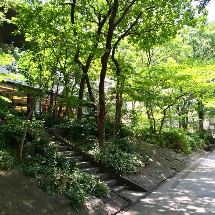 新宿京王プラザホテル「樹林」
