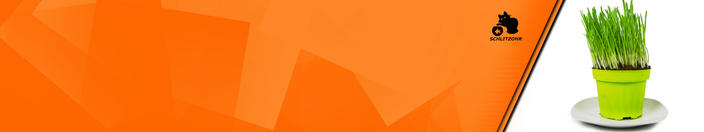 Katzengras Banner