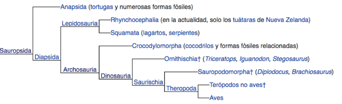 Fuente: https://es.wikipedia.org/wiki/Reptilia