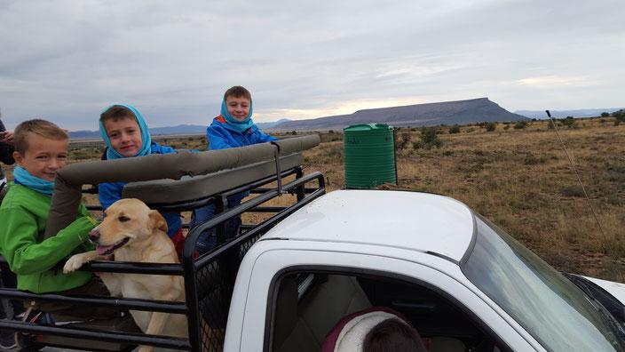 Rundfahrt um die Farm
