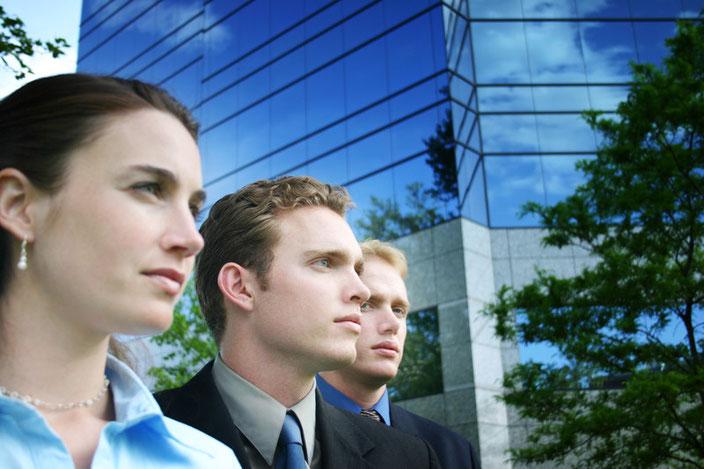 Encuesta de clima organizacional y laboral, Interpretación de los resultados obtenidos, Diagnóstico profesional y asesoría especializada en la elaboración de estrategias y acciones para mejorarlo.