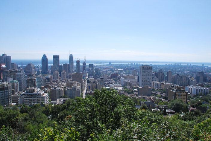 Montréal Skyline Kanada Quebec Sightseeing
