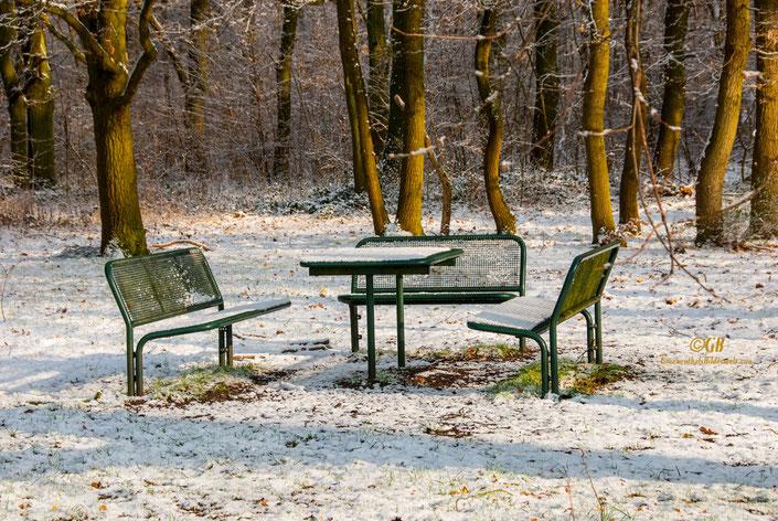 Tisch und Bänke am Waldrand