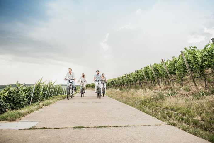 Winora Sinus i-Serie e-Bikes 2019
