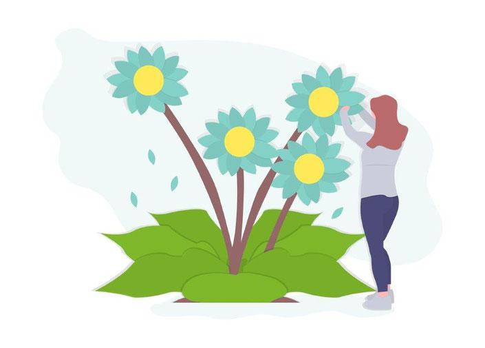Local SEO: Frau pflegt wachsende SEO-Pflanze