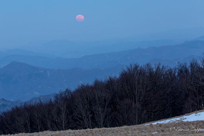Dai prati della Burraia il 12 marzo scorso; la luna piena sorge ad est , dal mare, ma una densa foschia l'ha occultata fino al momento in cui la luce del sole, che la stessa riflette, si è fatta largo permettendo di dar corso allo spettacolo naturale!!!!!